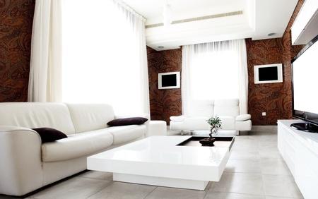 Luxury apartment with stylish modern interior design Stock Photo - 9059053