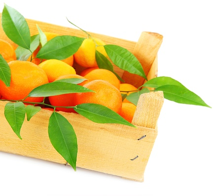 Fresh orange mandarins box, fruits  isolated on white background, concept of harvest & healthy eating concept