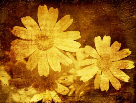 Yellow daisy, abstract floral grunge background with old dirty texture Stock Photo - 9359149