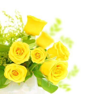 Fresh yellow roses border isolated on white background photo