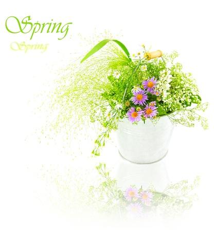 Bucket of spring fresh wild flowers isolated on white background photo
