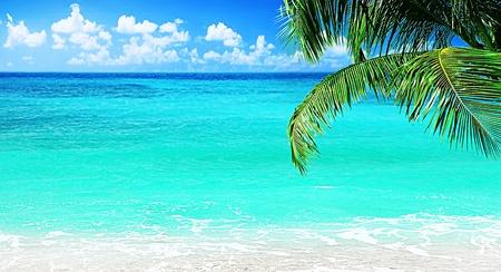 panorama beach: Spiaggia, splendida panoramica vista mare, con acqua pulita & cielo blu