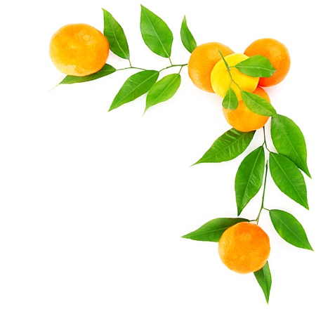 Fresh mandarins border isolated on white background, healthy eating concept