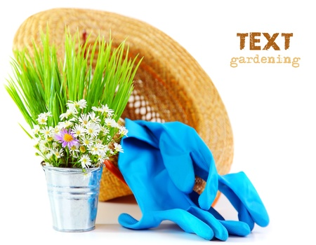 garden tools: Gardening tools with fresh flowers isolated on white background, organic garden concept Stock Photo