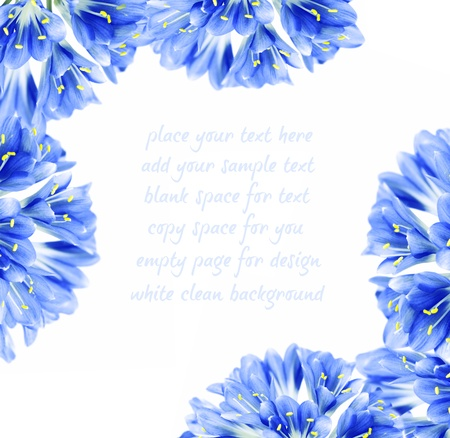 flower card: Abstract blue fresh flower border, isolated on white background with text space
