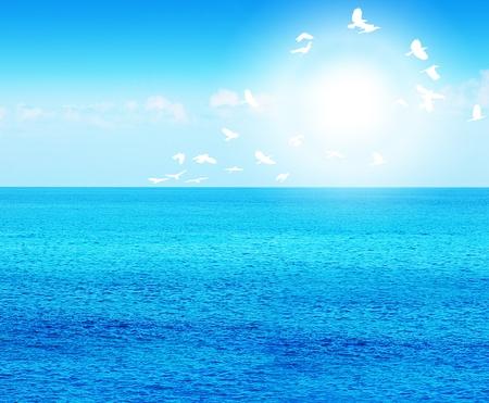 Tiefer blauer Seehintergrund mit Vögeln, schönes Wasser der Natur, ruhiger Strand mit Sonnenlicht Standard-Bild