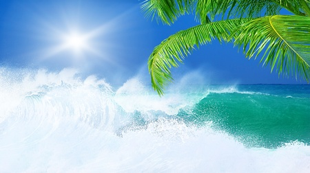 wind surfing: Paradise beach, beautiful nature, seascape with high surfing waves, summertime vacation concept