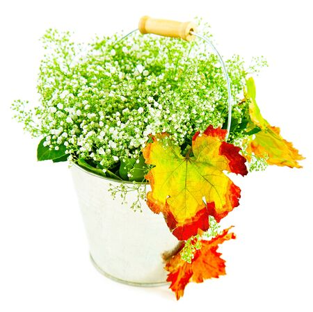 Bucket of autumn leaves & wildflowers, isolated on white background photo