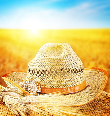 wheatfield: Wheat field and the hat of a farmer, agricultural business industry, autumn seasonal harvest concept Stock Photo
