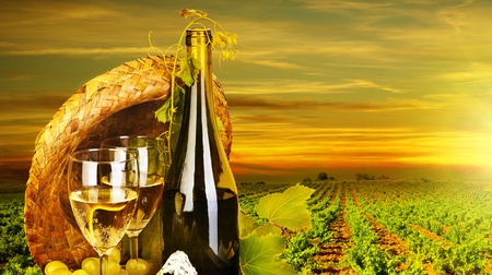 Wine. Rromantic dinner outdoor, table for two with vineyard view, fresh grapes and wineglass at restaurant, warm autumn sunset, grape field landscape at harvest, food still life
