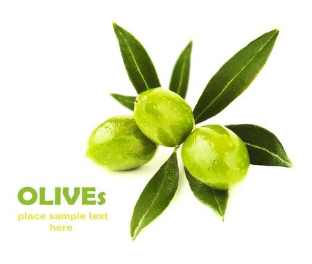 新鮮なグリーン オリーブの枝は、白い背景、季節の健康的な果物、食品成分、収穫に分離
