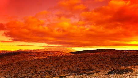 desert sunset: Dramatic red sunset at desert, beautiful natural landscape with colorful bright sky