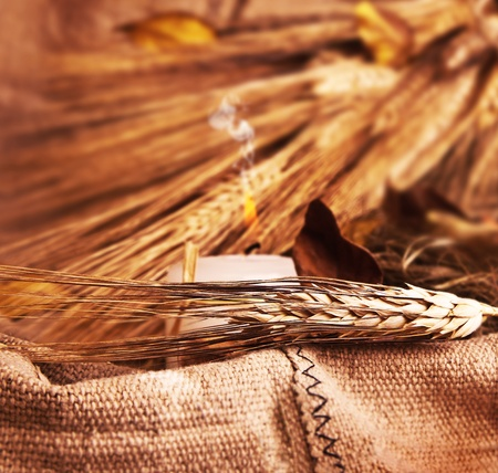 Wheat on canvas with candle, thanksgiving decoration, autumn background, harvest concept Stock Photo - 10874980