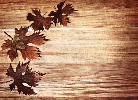 Autumn leaves border over natural wood background, old dry leaf shape, nature at fall Stock Photo - 10874987