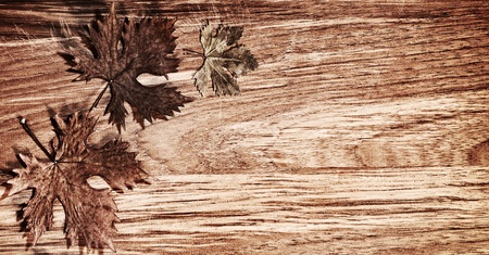 Autumn leaves border over natural wood background, old dry leaf shape, nature at fall Stock Photo - 10942198