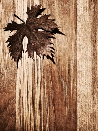 Autumn leaf  border over natural wood background, old dry leaf shape, nature at fall photo