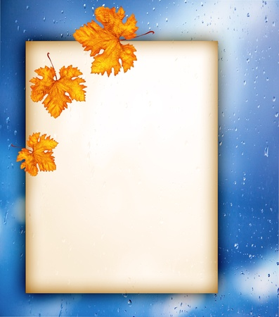 Old paper with autumn leaves over wet window abstract background, fall season nature collage, with blank space for text Stock Photo - 10993992