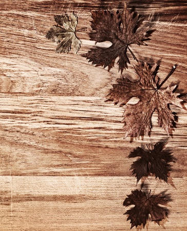 Autumn leaves border over natural wood background, old dry leaf shape, nature at fall Stock Photo - 10994017