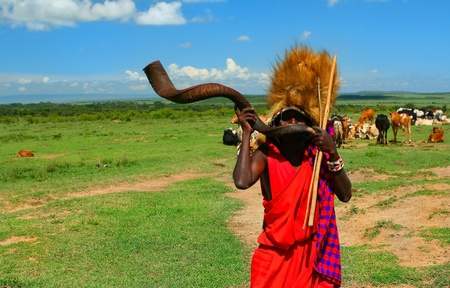 african warriors: Masai warrior playing traditional horn. Africa. Kenya. Masai Mara
