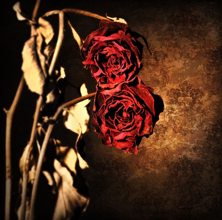 Grunge wilted roses over abstract dark old wallpaper background, floral red border with dried out flowers, retro vintage style photo, death concept photo