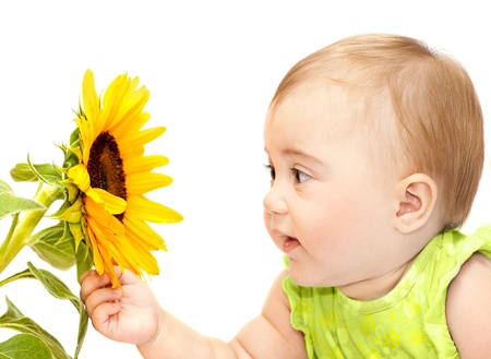 Baby girl exploring flower, elementary study of nature, cute kid playing with plant, small curious child holding sunflower in hand, personal growth concept  photo