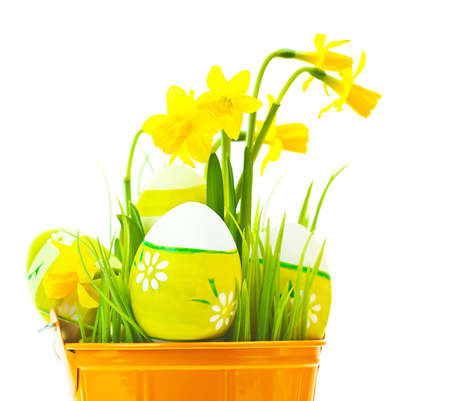 Painted Easter eggs with yellow narcissus flowers, festive traditional food for spring Christian holiday, colorful still life, decoration isolated over white background photo