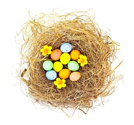 Easter colorful eggs with dry grass in the nest, festive traditional food for spring Christian holiday, colorful still life, decoration isolated over white background  photo
