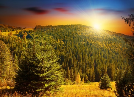 Colorful sunset at forests mountains, peaceful woods landscape of Europe countryside, beautiful nature scene, evergreen fir trees and sunny warm sky  photo