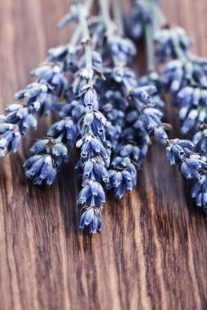 Lavender flowers isolated on wooden background, beautiful purple floral bouquet decorates brown textured backdrop, violet lavandula plant, aromatherapy and alternative medicine concept photo
