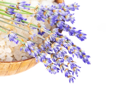 Bowl with salt and lavender flowers isolated on white background, fresh purple floral bouquet on wooden plate, conception of day spa, relaxation, health care, herbal cosmetics, alternative medicine  photo