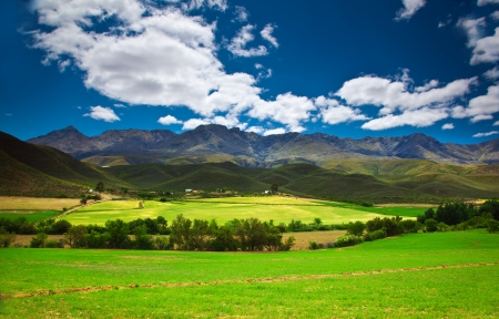 south african: Image of South Africa landscape, mountains range and agricultural fields, beautiful summer nature, Garden Route park, wildlife safari, beauty of African continent, eco tourism and travel