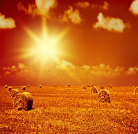 Image of beautiful orange sunset on dry wheat field, many golden rye rolls on farmland, countryside landscape with bright yellow evening sunlight, rural corn meadow, autumn harvest season, agriculture concept   photo