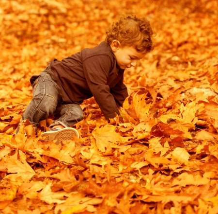 Photo of cute little boy having fun in autumn park, pretty child sitting on dry old orange foliage in woods, small kid playing with fall trees leaves in the forest, happy and carefree childhood   photo
