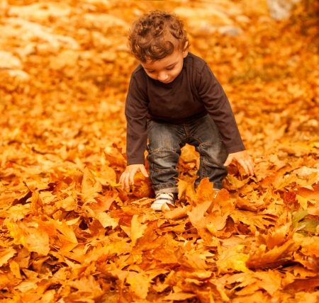 Picture of adorable kid playing game with dry autumnal leaves in forest, pretty infant enjoying autumn holidays, nice toddler having fun on backyard, carefree childhood, happines concept   photo