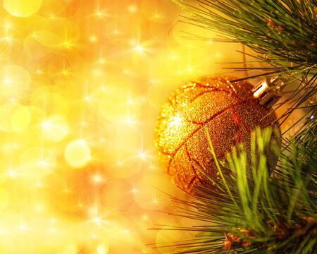 Yellow Trees Images Image of Christmas Tree Branch