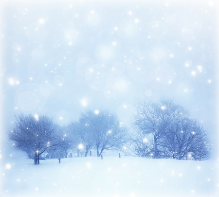 snow scenes: Photo of beautiful snowy landscape, Christmas postcard, snow cover on the trees, seasonal snowfall, snowstorm in cold winter day, frosty weather, hoarfrost on wood branches, wintertime panorama
