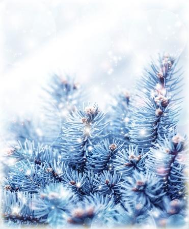 sapin: Image de fond arbre enneig� sapin, abstrait naturel, branche de pin recouverte de givre, de conif�res rameau de la fronti�re, la saison d'hiver magnifique, carte de voeux de nouvel an, vacances de No�l Banque d'images