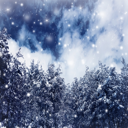 Photo of a beautiful winter forest, big spruce covered with snow, natural border of old Christmas trees over blue sky, fresh wintertime background with falling snowflakes, dreamy fairytale photo