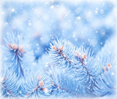 Image of fir tree covered hoar background, coniferous branch dressed in rime, cold frosty weather, wintertime season, New Year holiday greeting postcard, snow falling, beautiful snowflakes outdoors photo