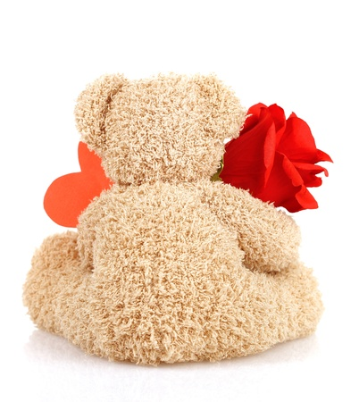 Picture of brown furry Teddy bear with red beautiful rose and heart-shaped greeting card isolated on white background, back side of cute soft toy, Valentine day holiday, romantic gift, love concept photo