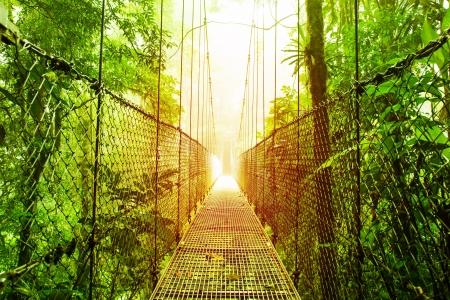 vlonder: Afbeelding van Arenal Opknoping Bridges Ecologische reserve, natuurlijke regenwoud park, La Fortuna de San Carlos stad, Costa Rica, Midden-Amerika, loopbrug in de jungle, reizen en toerisme concept van