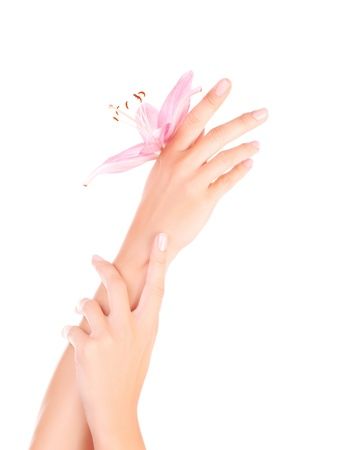 Image of beautiful female hands with pink lily flower, womens body part isolated on white background, dayspa, natural cosmetics for arms, luxury beauty and spa salon, manicure and massage concept photo