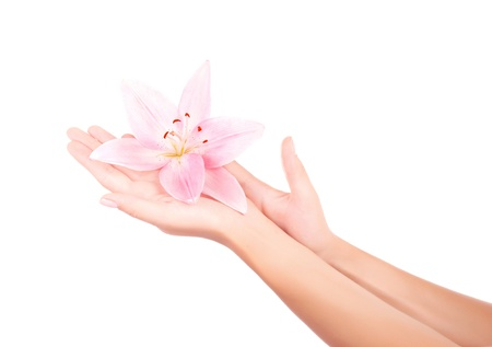 Picture of womens arm holding pink lily flower isolated on white background, herbal cream for female hands, luxury massage salon, enjoying dayspa, cute manicure, healthy lifestyle, skin care concept photo