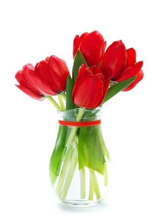 tulips in vase: Photo of beautiful flowers bouquet in glass vase isolated on white background, fresh red tulips bunch, birthday present, happy mothers day, celebration spring holiday, floral bunch Stock Photo