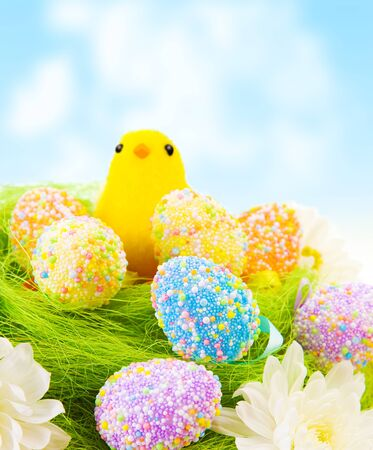 Cute small yellow Chick toy with colorful eggs in the nest outdoor, traditional Easter decoration, happy holiday photo