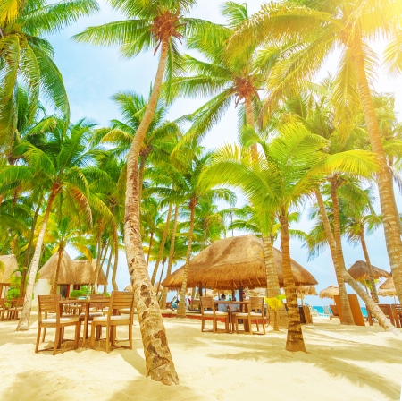 carmen: Romantic restaurant on the tropical beach, sunny day, palm trees, Playa del Carmen, North America, day spa, luxury resort, summer vacation concept Editorial