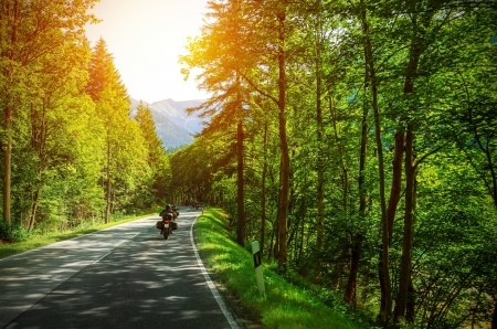 Biker on mountainous road in sunset light, motorcyclist on highway, drive motorbike along Alps, Europe trip, beautiful forest, active lifestyle Stock Photo
