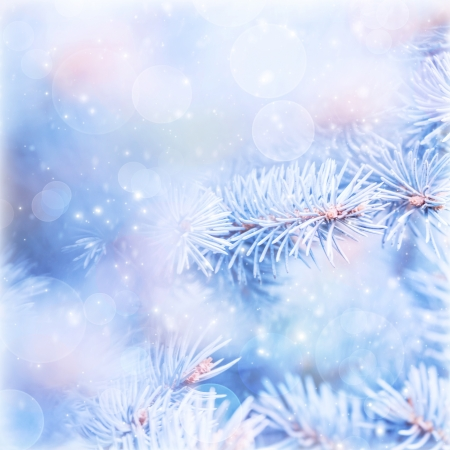 Natural blue wintertime background, fir tree branch covered with hoar, bokeh light, shallow depth of field, weather of december, New Year holidays