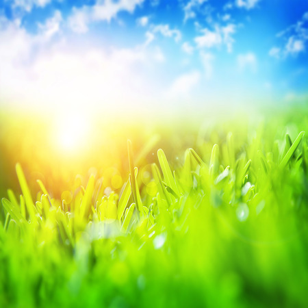 Beautiful spring landscape, fresh green grass, blue sky,\ bright yellow sun light, gorgeous warm weather, springtime season\ concept