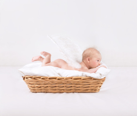 Baby with feather wings lying down in wicker basket isolated on white background photo